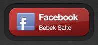 Akun Facebook Bebek Salto